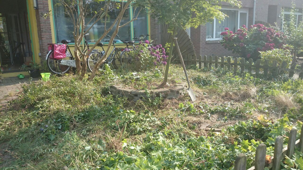 Tuinonderhoud, onkruid verwijderen tuin met veel onkruid