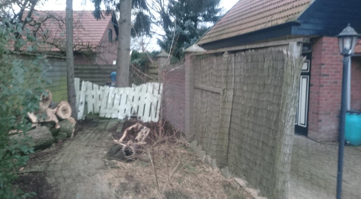 Gevaarlijke, scheve, boom omzagen Drenthe