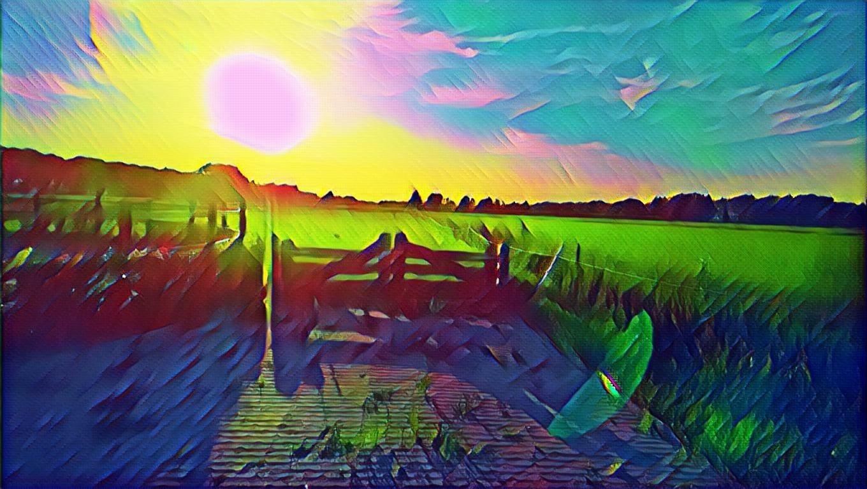 tuinontwerp Drenthe